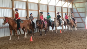 Equestrian Summer Camp - Beginner riders