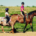 Equestrian Summer Camp - Teaching Basics